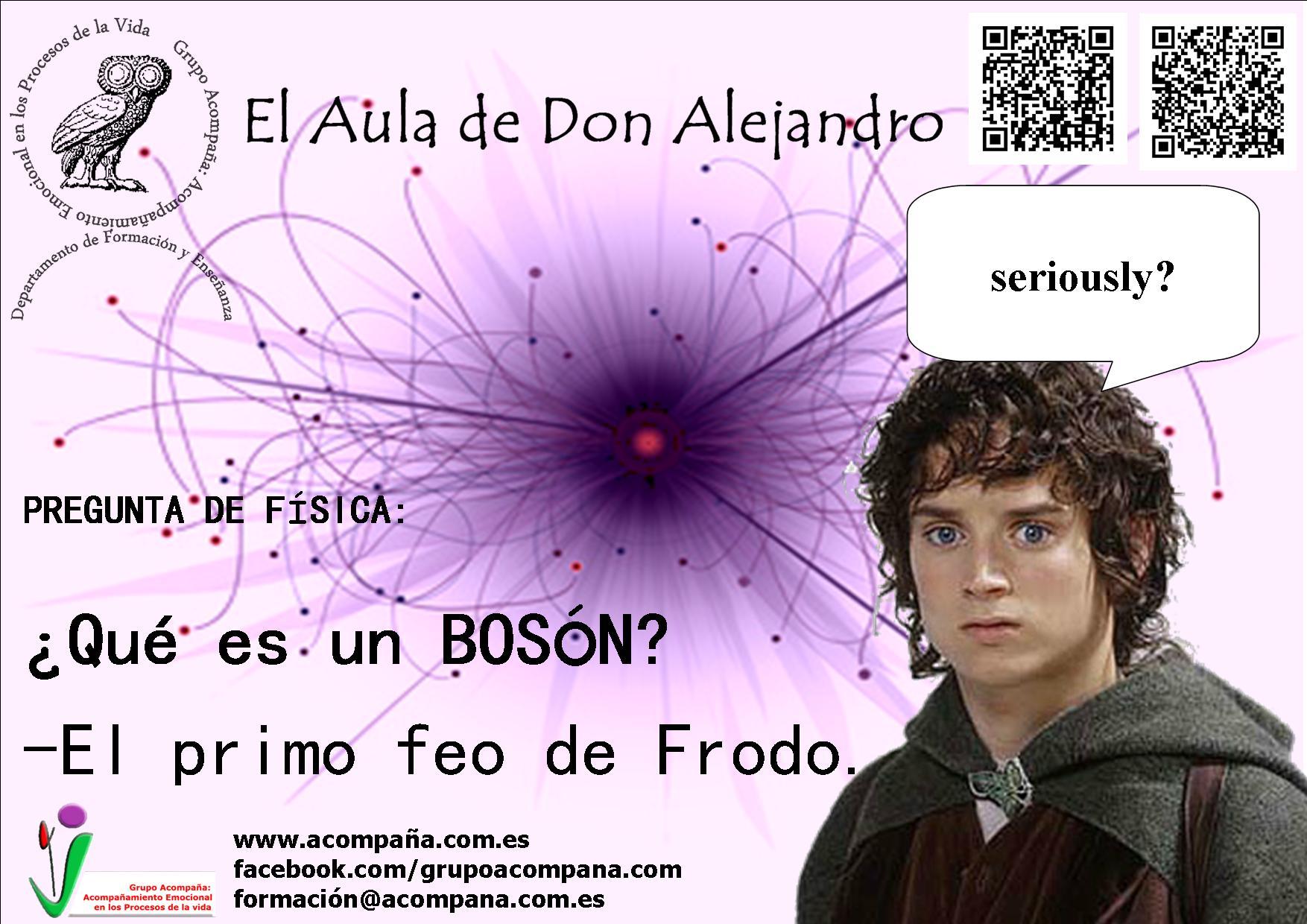 frodoboson